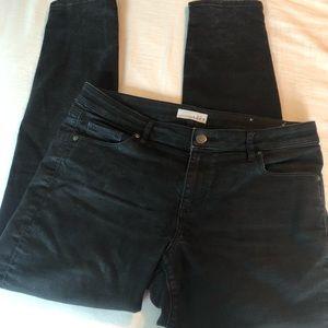 LOFT Ann Taylor black jeans